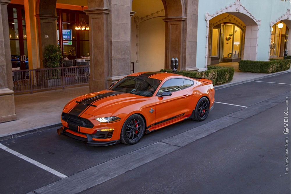 Shelby Mustang Super Snake Bold Edition Photo 2020 8