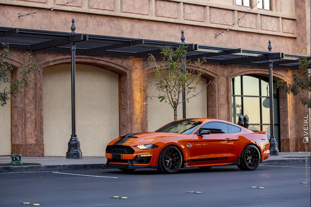 Shelby Mustang Super Snake Bold Edition Photo 2020 14